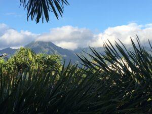 From Balcony in Kauai #1